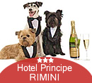 pets friendly per Capodanno